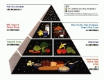 Graphics - MDC - Food Pyramid